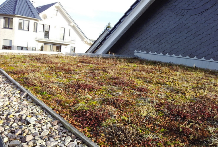 Flachdach mit Dachbegrünung und Schieferarbeit